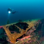 Diver on USS Hogan Wreck, San Diego