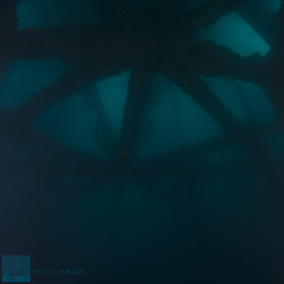 Diving the Eureka Oil Rig