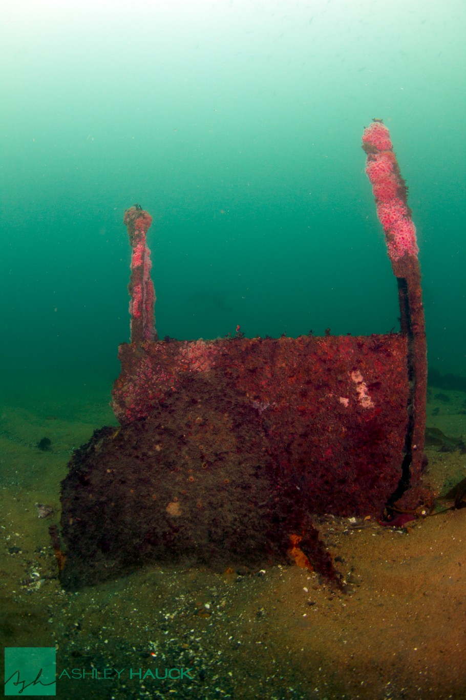 San Diego, California: Superstructure wreckage of the El Rey Wreck