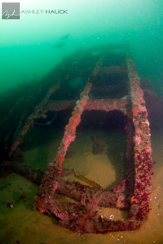 San Diego, California: Kelp cutting arm of the El Rey Wreck