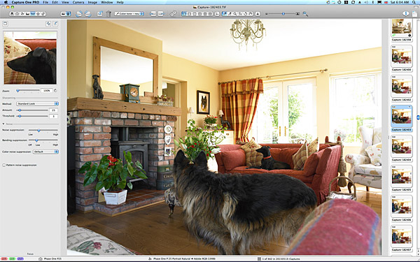 Image taken in the living room of Lesley Anderson's cottage style bungalow