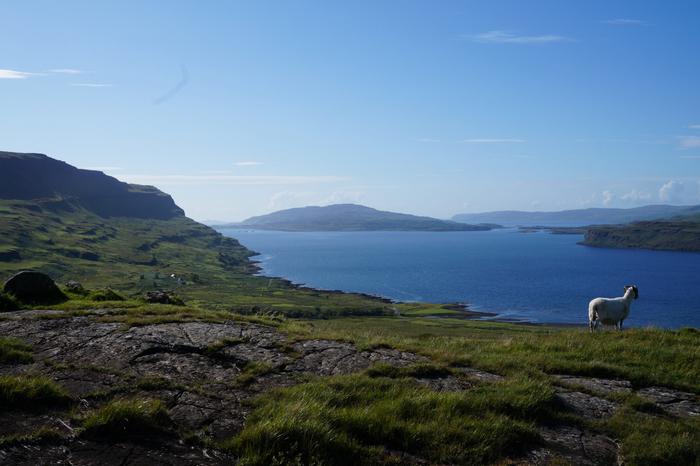 Isle of Mull 8