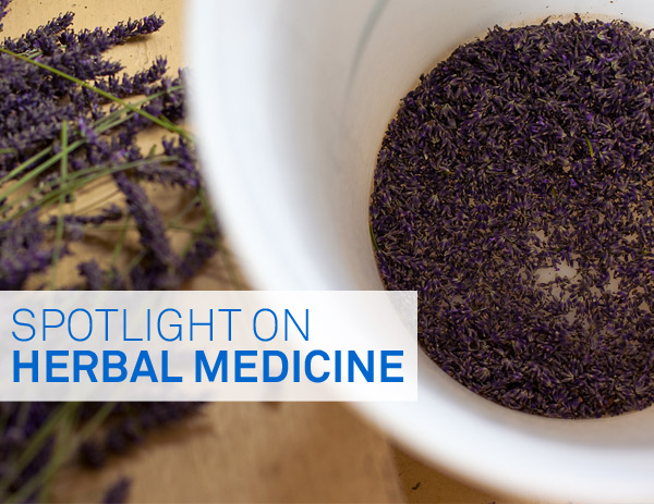 Spotlight on Herbal Medicine