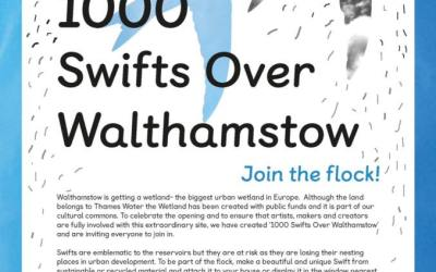 Join Us on the E17 Art Trail as part of 1000 Swifts Over Walthamstow