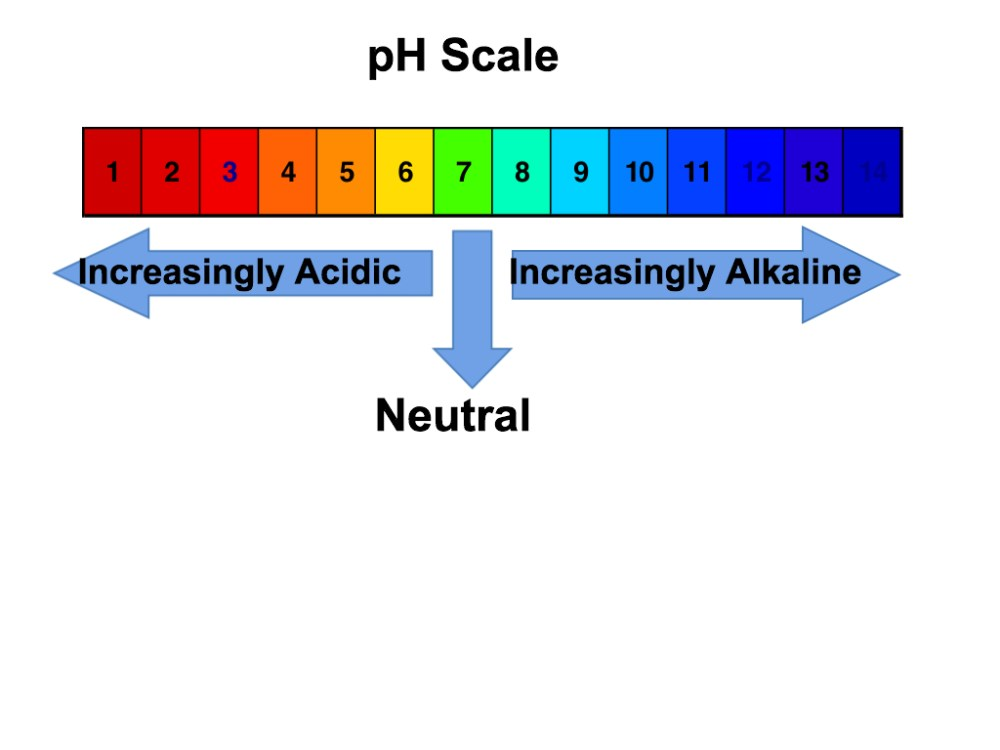medium resolution of ph scale big please click on diagram to enlarge