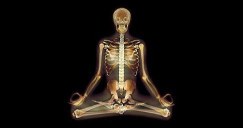 Neuroscience-Yoga-Featureo