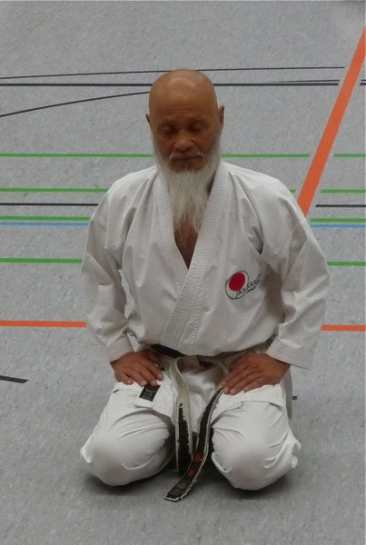 Ahis  The Bridge between Yoga and Karate  AshtangaYoga