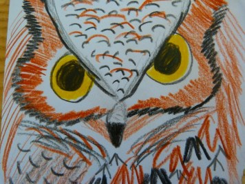 Leah's Great Horned Owl