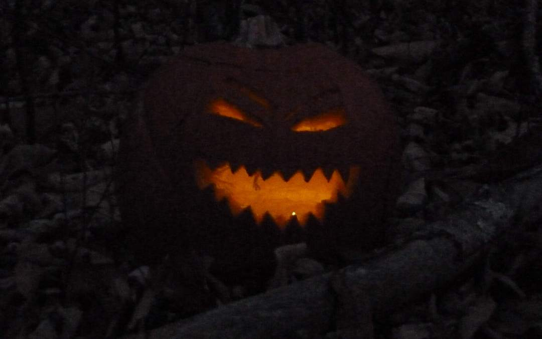 Pumpkin Walk Pictures