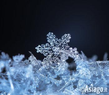 Real Snowflakes Falling Wallpaper Laboratorio Di Chimica Quot Fiocchi Di Neve Quot Al Museo Le