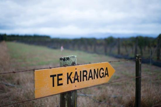 Foley Wines - Te Kairanga