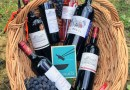 Château Castagnac – Wines from Fronsac & Bordeaux Superior
