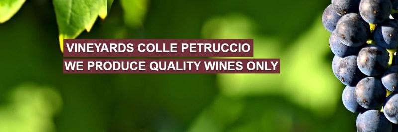 collepetruccio_wines_to_export