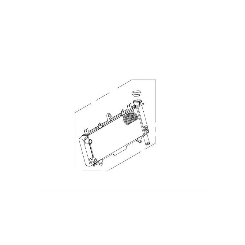 Radiator Kawasaki NINJA 650 39061-0727