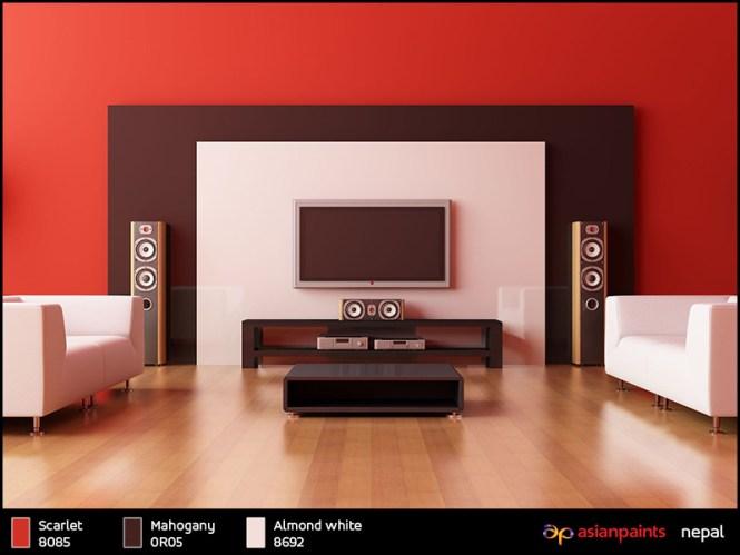 Interior Walls Color Combinations Home Design