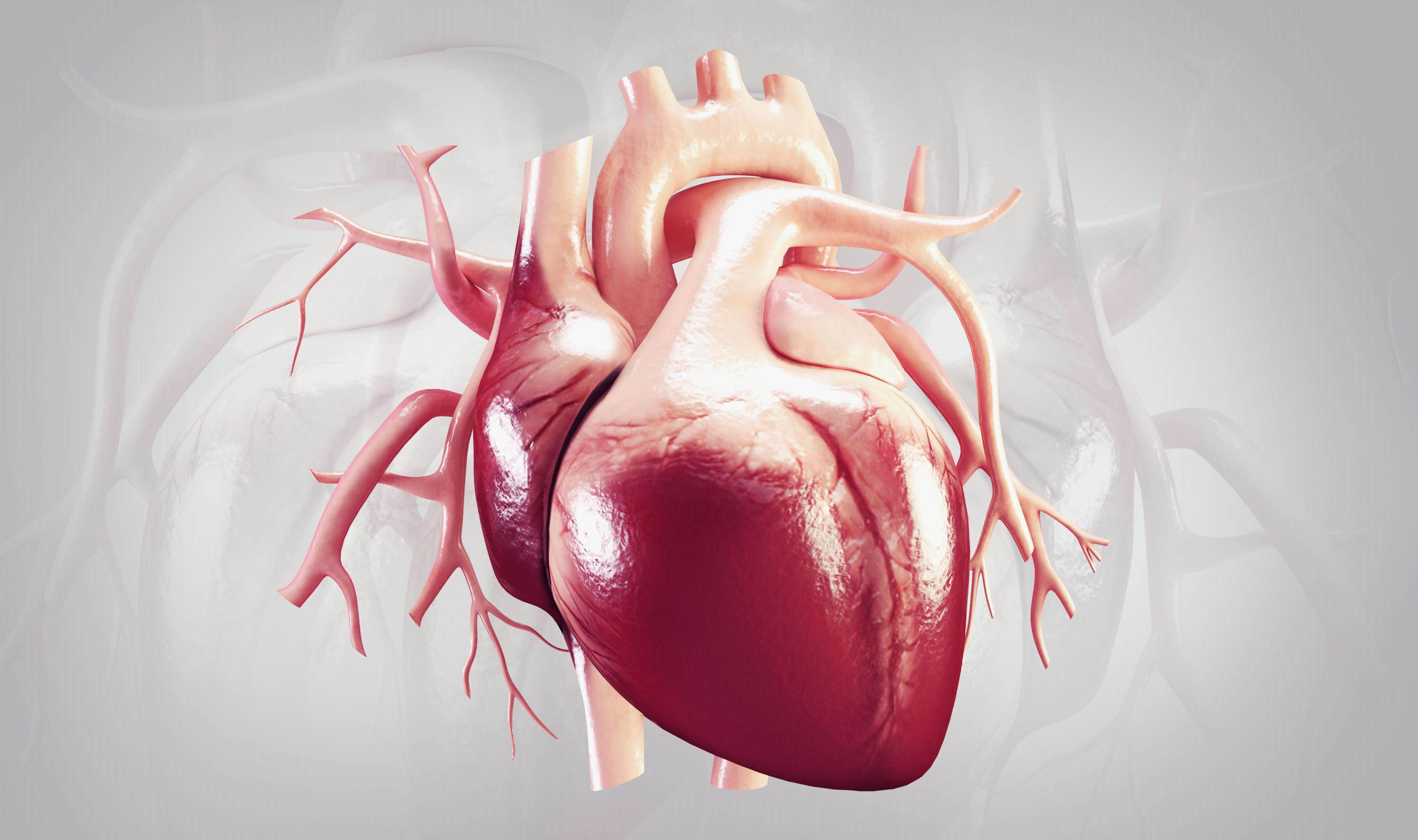 Helping The Heart Heal Itself