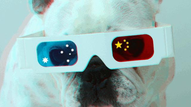Dogimage2