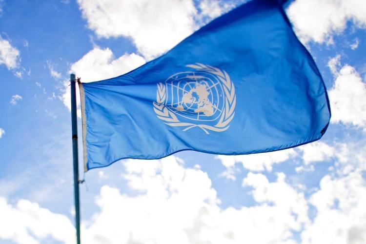 United Nations Flag - credit: sanjitbaskshi via flickr
