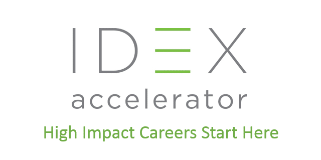 IDEX Accelerator offers a social enterprise fellowship program in India