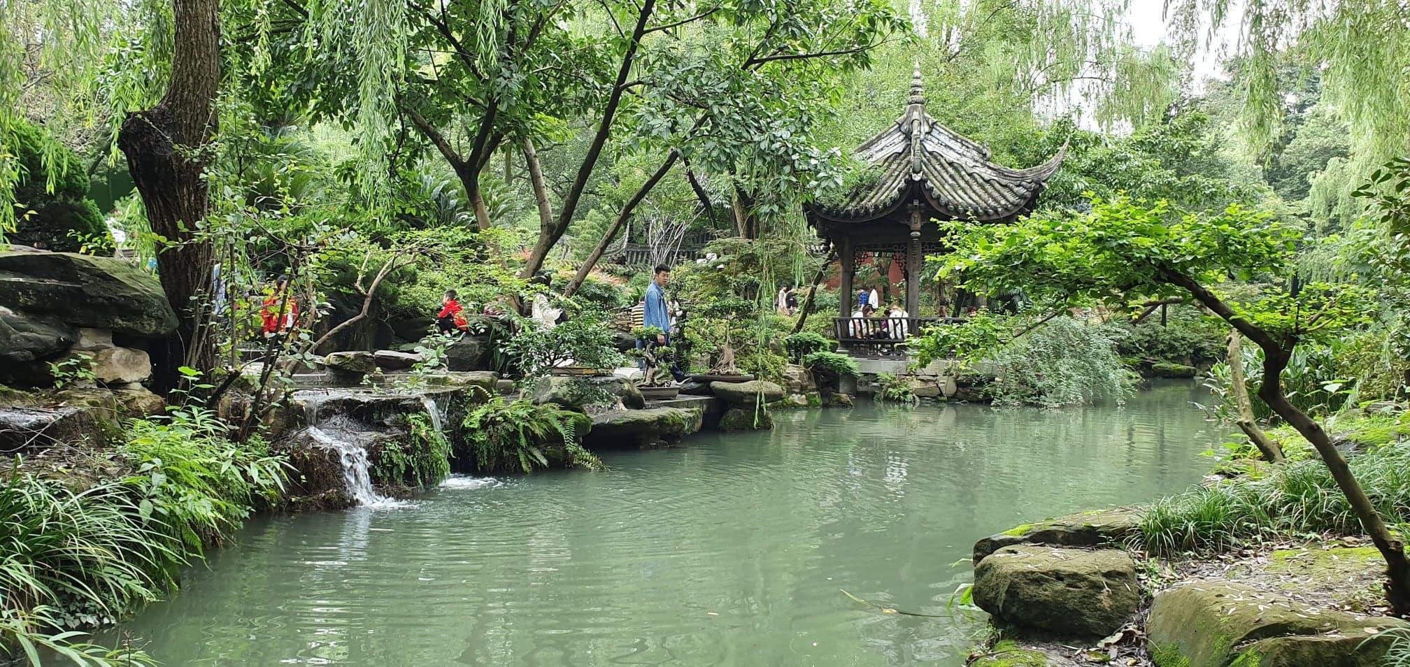Choosing Chengdu – Insights From Hamer Scholar Jason Cheetham