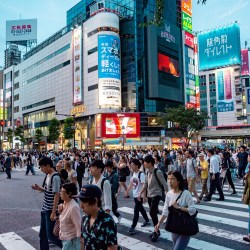Job hunting in Japan: Here's everything you need to know