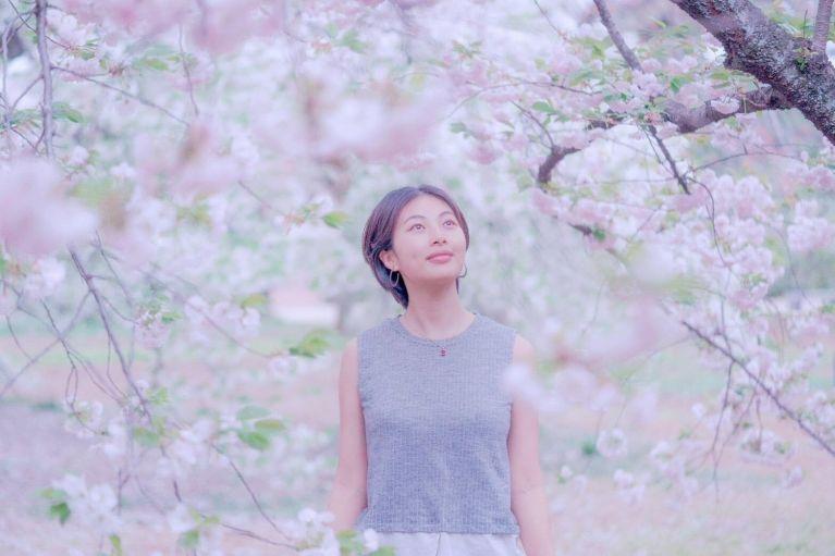 meira in front of the sakura