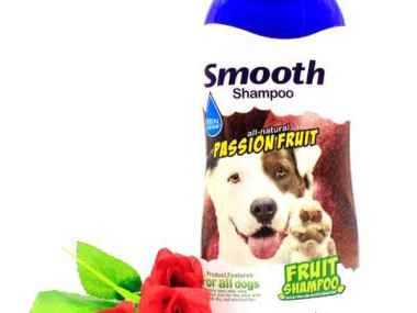 BBN Passion Fruit Smooth Shampoo 500ml