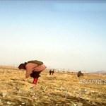 (참고사진) 수확 후 밭에 떨어진 이삭을 줍는 늙은 여성. 북한에서는 가을이 되면 흔히 볼 수있는 광경이다. 2012년 11월 평안북도 신의주시 교외. 평안북도 거주의 아시아프레스 취재협력자 촬영(아시아 프레스)