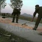 병사들이 말린 옥수수를 모으고 있다. 농장의 밭에 군대가 직접 들어가서 수확한 뒤 말려서 가져갈 것이라고 한다. 2008년 10월 황해남도 과일군에서 촬영 심의천 (아시아프레스)