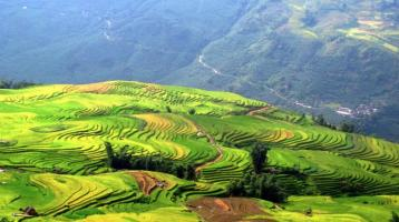 Vietnam: One of the most popular holiday destinations in world travel.