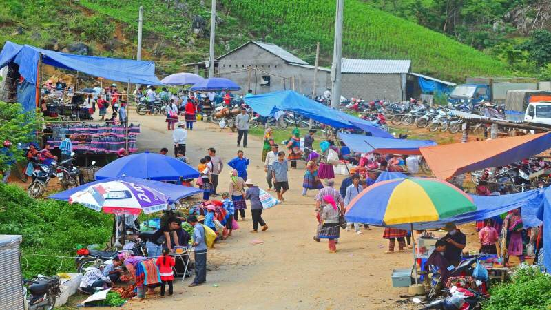 Coc Ly - Discover the uniqueness of Sapa highland market