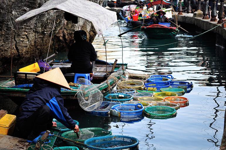 Halong Bay Seafood Market