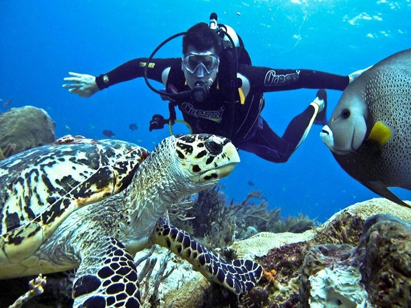 Vietnam –Paradise-for-divers4