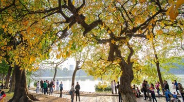 The romantic Autumn of ancient Hanoi