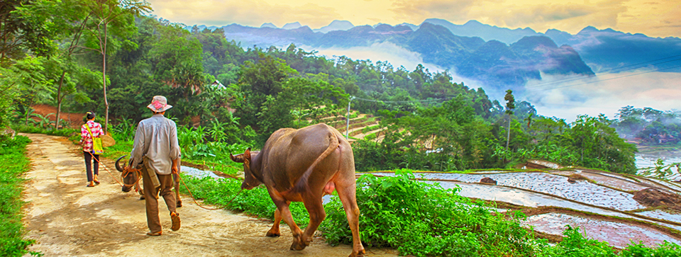 Things to do in Mai Chau, Places to Visit and Best Time to travel Mai Chau