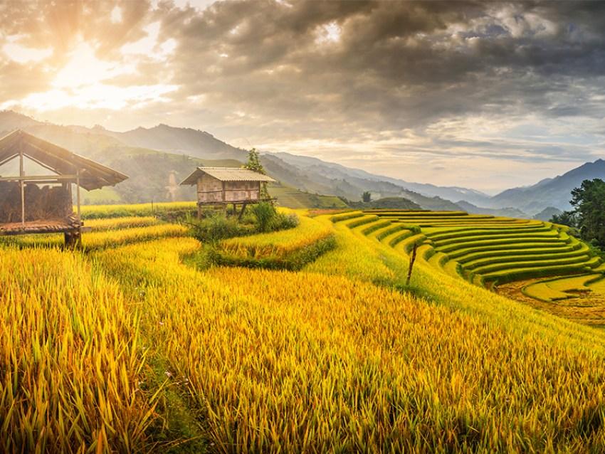 Beste reisezeit Vietnam, Vietnam reisezeit, Vietnam Beste Reisezeit