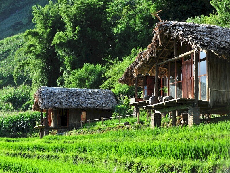 Top 10 amazing homestay in Sapa to visit before you die 7