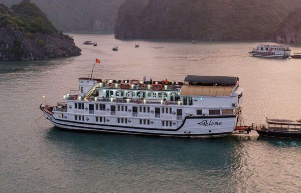 Prince Cruise Halong, Free Hanoi Airport Transfer. Prince Cruise reviews