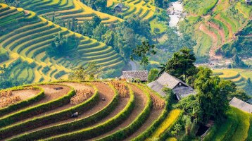 The Best Time To Visit Hoang Su Phi