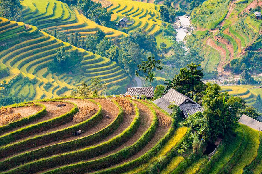 Best Time to Visit Hoang Su Phi, When Is The Best Time of Year To Visit Hoang Su Phi