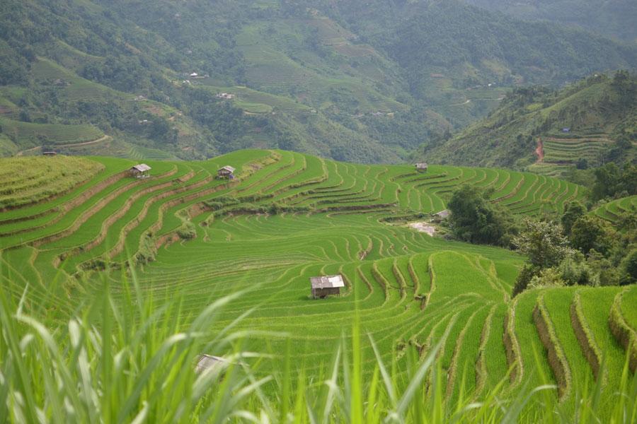 Phin Ho Village