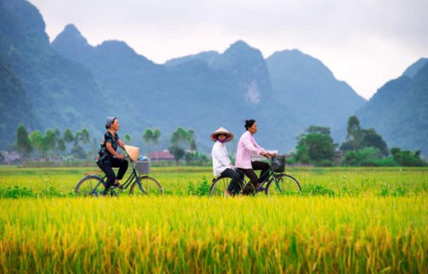 Travel Guide to Vietnam, Vietnam Vacation Packages, Trip to Vietnam