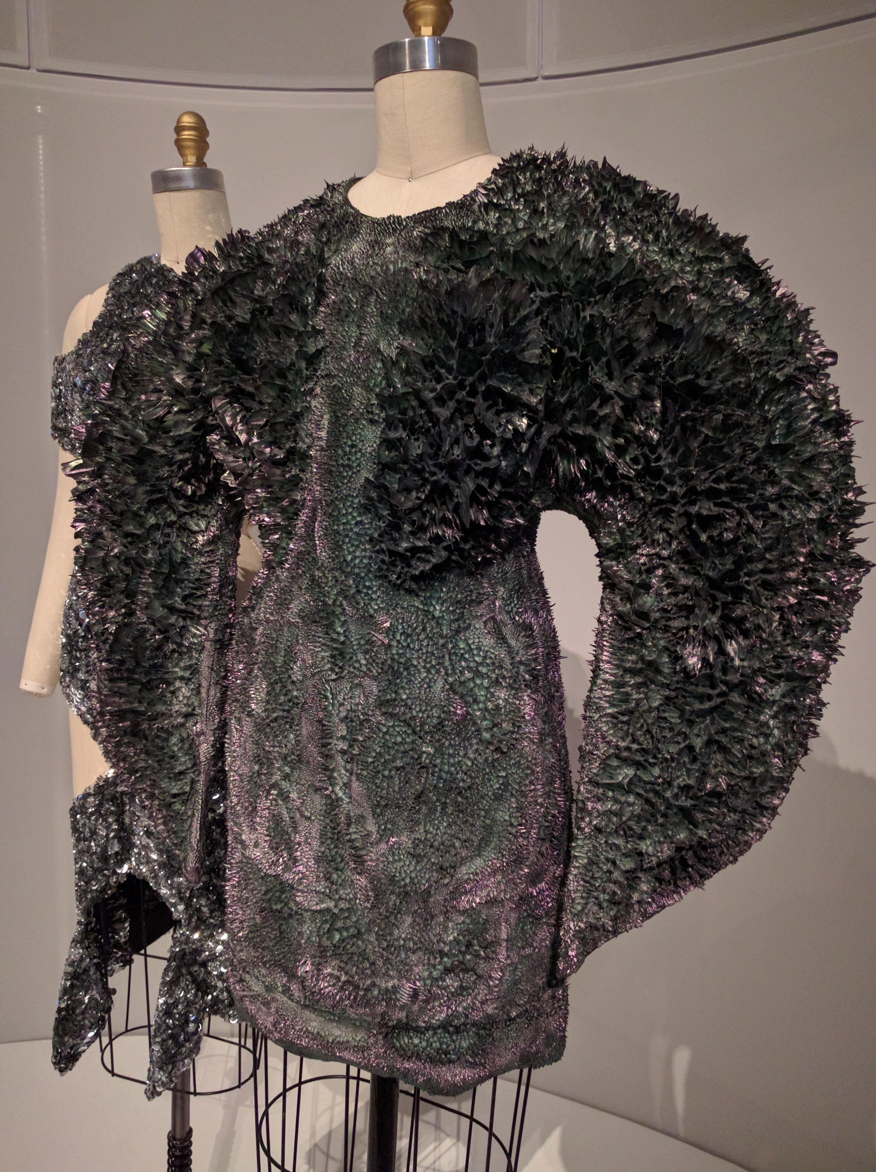 Iris Van herpen dress