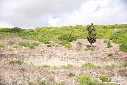 Amphitheatre - Lixus - Morocco - Asilah Info