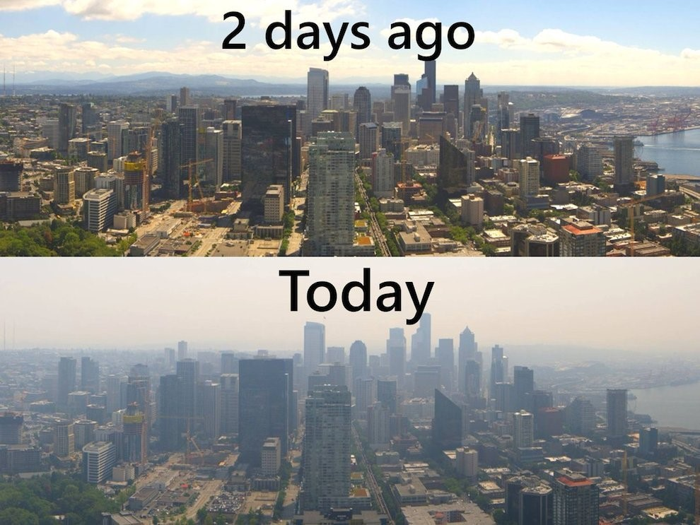 A Climate Changed World