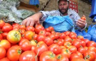 ارتفاع سعر البندورة في دمشق ليصل إلى 550 ليرة.. وصحيفة موالية للنظام توضح السبب