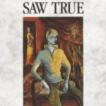 Boy Who Saw True Bookcover