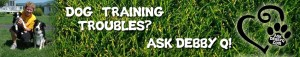 dog training troubles and ask debby q