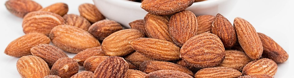 What are high protein low carb snacks?