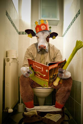 Bull Reading Book In Toilet Funny Picture